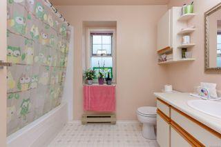 Photo 16: 4163 Shelbourne St in : SE Gordon Head House for sale (Saanich East)  : MLS®# 865988
