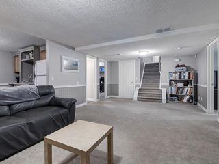 Photo 33: 27 DIAMOND Terrace SE in Calgary: Diamond Cove Detached for sale : MLS®# A1060608