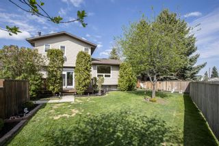 Photo 36: 31 Mchugh Place NE in Calgary: Mayland Heights Detached for sale : MLS®# A1111155