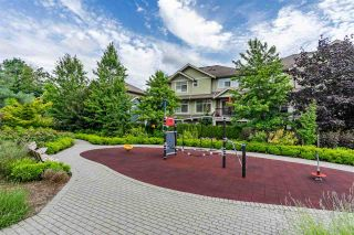 Photo 32: 411 5020 221A STREET in Langley: Murrayville Condo for sale : MLS®# R2524259