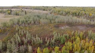 Photo 17: Hwy 11 & RR 53: Rural Parkland County Rural Land/Vacant Lot for sale : MLS®# E4265869