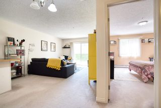Photo 14: 130 16221 95 Street in Edmonton: Zone 28 Condo for sale : MLS®# E4248810