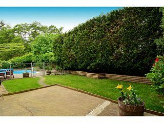"Photo 61: 8635 147A Street in Surrey: Bear Creek Green Timbers House for sale in ""Bear Creek / Green Timbers"" : MLS®# F1442956"