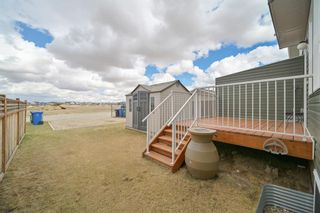 Photo 41: 162 REDSTONE Drive in Calgary: Redstone Semi Detached for sale : MLS®# A1102876