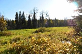 """Photo 17: 161 HELEN LAKE Road: Hazelton Land for sale in """"KISPIOX VALLEY"""" (Smithers And Area (Zone 54))  : MLS®# R2355392"""