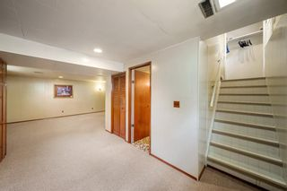 Photo 20: 3320 Dover Ridge Drive SE in Calgary: Dover Detached for sale : MLS®# A1141061