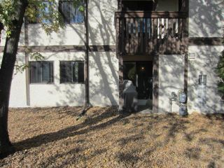 Photo 14: 101 Swindon Way in WINNIPEG: River Heights / Tuxedo / Linden Woods Condominium for sale (South Winnipeg)  : MLS®# 1220815