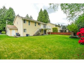 Photo 5: 34232 LARCH Street in Abbotsford: Abbotsford East House for sale : MLS®# R2574039
