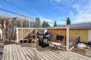 Photo 35: 801 20 Avenue NW in Calgary: Mount Pleasant Duplex for sale : MLS®# A1084565