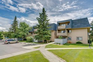 Photo 1: 2310 3115 51 Street SW in Calgary: Glenbrook Apartment for sale : MLS®# A1014586