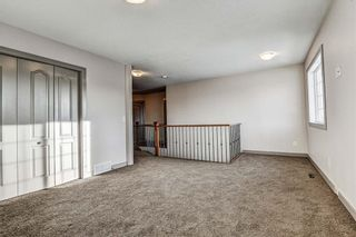 Photo 23: 36 ROYAL HIGHLAND Court NW in Calgary: Royal Oak Detached for sale : MLS®# A1029258