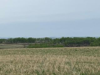 Photo 5: TOWNSHIP ROAD 574 in Rural Rocky View County: Rural Rocky View MD Land for sale : MLS®# C4297165