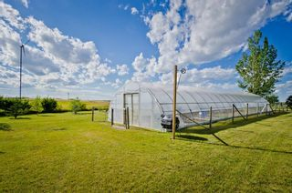 Photo 9: 214080 Range Road 254 Road: Rural Vulcan County Detached for sale : MLS®# A1022793