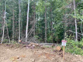 Photo 4: Lot 16 Highway 14 in Windsor Forks: 403-Hants County Vacant Land for sale (Annapolis Valley)  : MLS®# 202104611