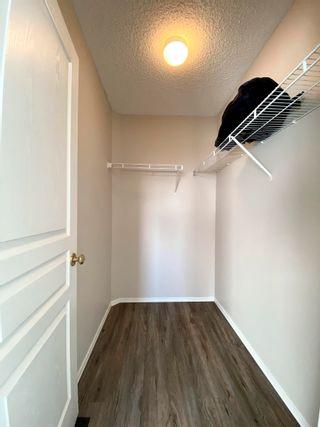 Photo 31: 11 VENTURA Street: Spruce Grove House Half Duplex for sale : MLS®# E4266429