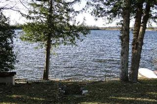 Photo 9: 41 North Taylor Road in Kawartha Lakes: Kirkfield House (Bungalow) for sale : MLS®# X2580553