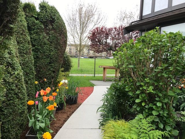 """Main Photo: 5 8540 COOK Road in Richmond: Brighouse Townhouse for sale in """"'Caroline Place'"""" : MLS®# R2164413"""