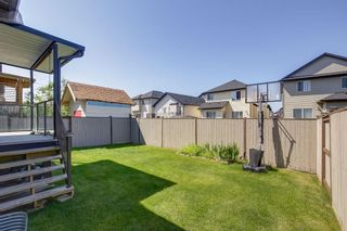 Photo 37: 8233 SADDLEBROOK Drive NE in Calgary: Saddle Ridge Detached for sale : MLS®# A1082147