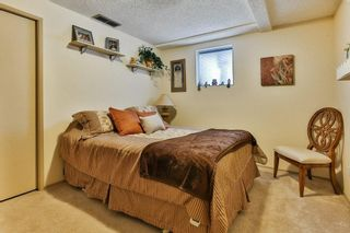 Photo 31: 111 EDFORTH Place NW in Calgary: Edgemont Detached for sale : MLS®# C4280432