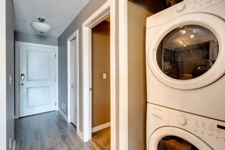 Photo 24: 4207 1317 27 Street SE in Calgary: Albert Park/Radisson Heights Apartment for sale : MLS®# A1126561