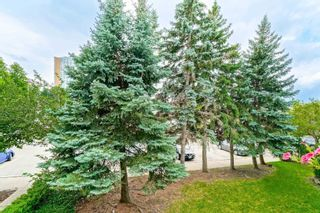 Photo 29: 1021 95 Trailwood Drive in Mississauga: Hurontario Condo for sale : MLS®# W4878419