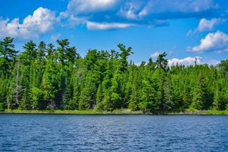 Photo 7: lot 2 Five Point Island in South of Kenora: Vacant Land for sale : MLS®# TB212084