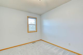 Photo 31: 355 HAMPSHIRE Court NW in Calgary: Hamptons Detached for sale : MLS®# A1053119