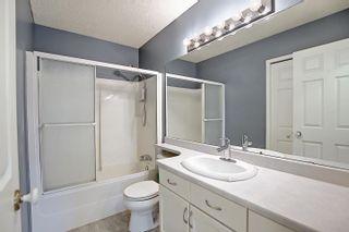 Photo 25: 30 DORIAN Way: Sherwood Park House for sale : MLS®# E4248372