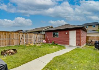Photo 39: 481 Evanston Drive NW in Calgary: Evanston Detached for sale : MLS®# A1126574