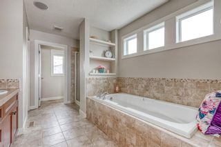 Photo 25: 212 COPPERPOND Circle SE in Calgary: Copperfield Detached for sale : MLS®# C4305503