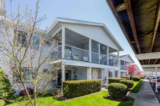 """Photo 27: 250 32691 GARIBALDI Drive in Abbotsford: Abbotsford West Townhouse for sale in """"Carriage Lane"""" : MLS®# R2262736"""