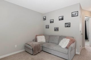 Photo 17: 2566 COUGHLAN Road in Edmonton: Zone 55 House for sale : MLS®# E4247684