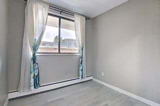 Photo 28: 301 1414 5 Street SW in Calgary: Beltline Apartment for sale : MLS®# A1131436