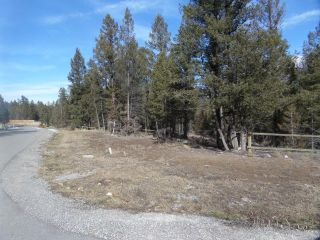 Photo 10: Lot 6 SWANSEA ROAD in Invermere: Vacant Land for sale : MLS®# 2457554
