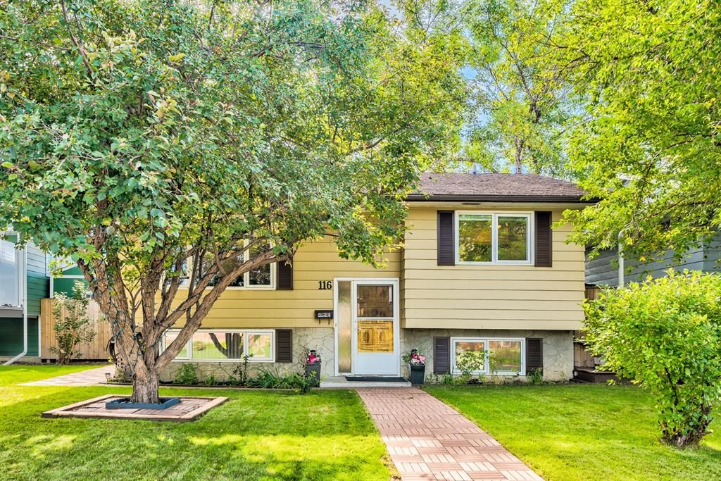 Main Photo: 116 Dovercrest Place SE in Calgary: Dover Detached for sale : MLS®# A1143195