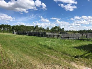 Photo 47: Tatchell Acreage - Leo Mitchell Road in Battle River: Residential for sale (Battle River Rm No. 438)  : MLS®# SK842485