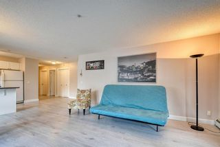Photo 17: 113 9 Country Village Bay NE in Calgary: Country Hills Village Apartment for sale : MLS®# A1052819