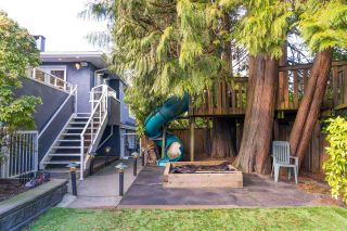 Photo 37: 784 E 15TH Street in North Vancouver: Boulevard House for sale : MLS®# R2552007