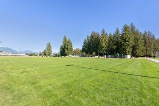 """Photo 20: 202 19241 FORD Road in Pitt Meadows: Central Meadows Condo for sale in """"VILLAGE GREEN"""" : MLS®# R2504429"""