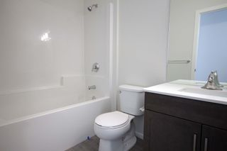 Photo 15: 46 Bartman Drive in St Adolphe: Tourond Creek Residential for sale (R07)  : MLS®# 202120138