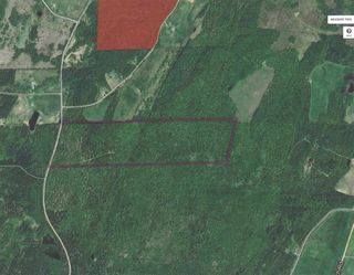 Photo 1: Pleasant Valley Road in Pleasant Valley: 108-Rural Pictou County Vacant Land for sale (Northern Region)  : MLS®# 202022836