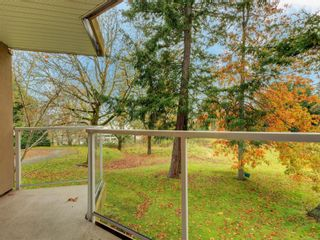 Photo 20: 203C 4678 Elk Lake Dr in : SW Royal Oak Condo for sale (Saanich West)  : MLS®# 859878