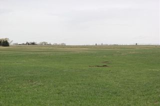 Photo 5: On Highway 567 in Rural Rocky View County: Rural Rocky View MD Land for sale : MLS®# C4233359