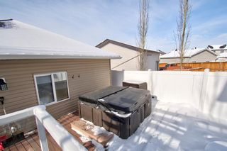 Photo 43: 202 Williamstown Close NW: Airdrie Detached for sale : MLS®# A1070134