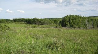Photo 15: TWP RD 272 & RR 41 in Rural Rocky View County: Rural Rocky View MD Residential Land for sale : MLS®# A1127957