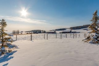 Photo 36: 322188 135 Street W: Rural Foothills County Detached for sale : MLS®# A1068193