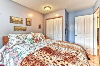 Photo 19: 103 Beddington Way NE in Calgary: Beddington Heights Detached for sale : MLS®# A1099388