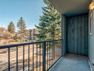 Photo 27: 202 1603 26 Avenue SW in Calgary: South Calgary Apartment for sale : MLS®# A1100163