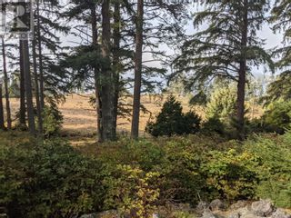 Photo 3: 7200 East Sooke Rd in Sooke: Vacant Land for sale : MLS®# 887209