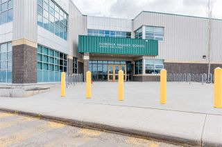 Photo 45: 7919 164 Avenue in Edmonton: Zone 28 House for sale : MLS®# E4239839